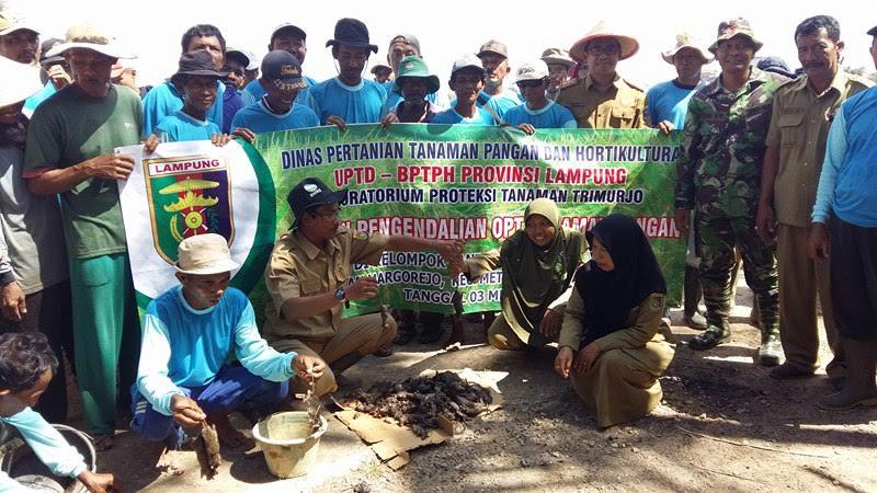 Dinas Pertanian Metro dan Poktan Sri Pujo Lestari Lakukan Grobyokan Tikus di Margorejo