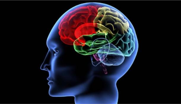 Ini Makanan yang Berbahaya Bagi Kesehatan Otak