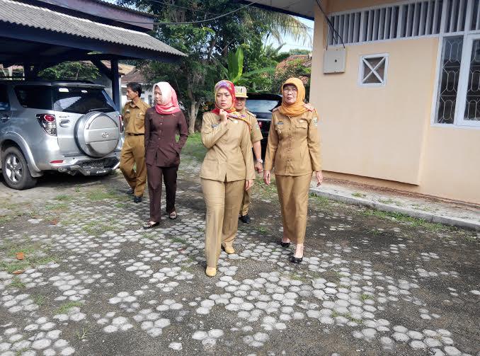 Tumpukan Kayu Mahoni di Kantor Dinas Pasar Lampung Timur jadi Sarang Nyamuk