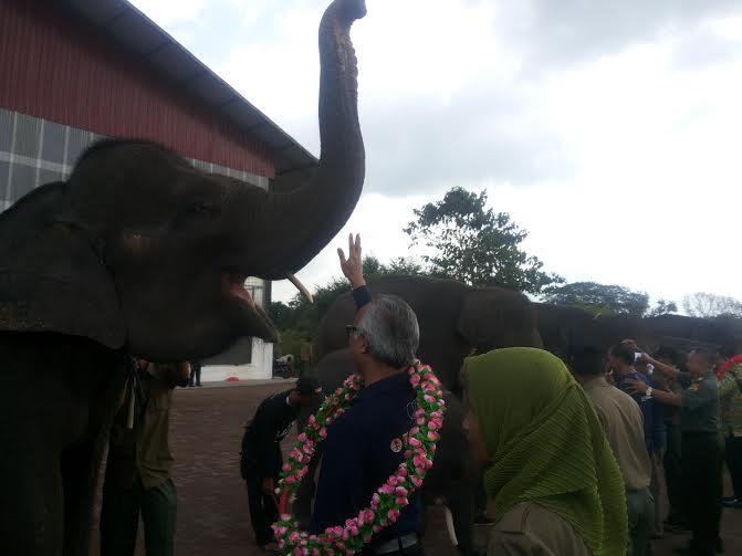 Taman Nasional Way Kambas Dinobatkan Sebagai ASEAN Heritage Park