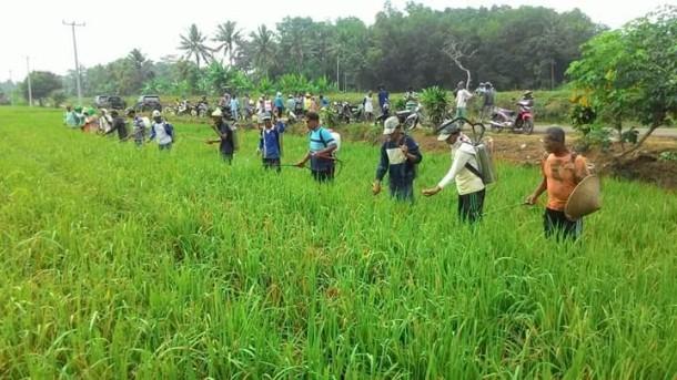Sutan Syahrir Minta PN Tanjung Karang Terima Gugatan Rangkap Jabatan di KONI Lampung