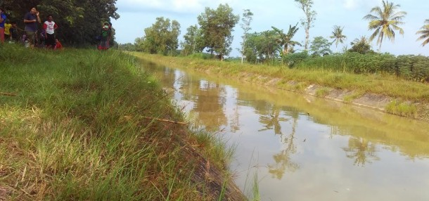 Saluran irigasi Kampung karang Endah Lampung Tengah, tempat ditemukan sesosok mayat, Sabtu, 16/7/2016. | Raeza Handani/Jejamo.com