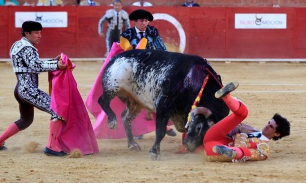 Seorang Matador Idola Spanyol Tewas Diseruduk Banteng