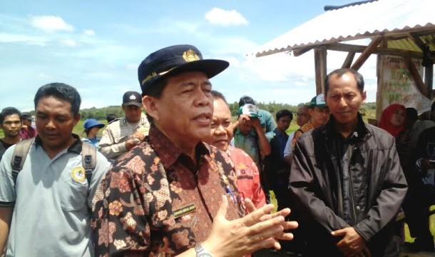 Ini Cara Pemkab Lampung Timur Minimalkan Konflik Gajah dan Manusia