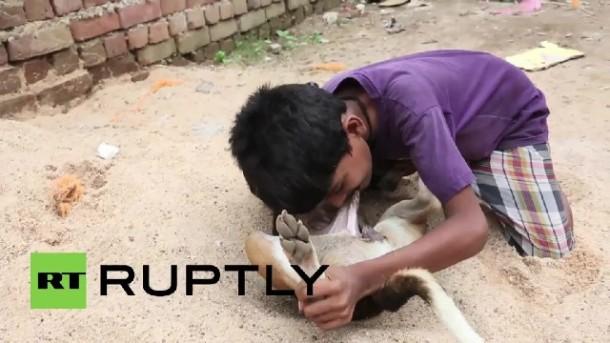 Unik, Bocah di India ini Hobi Minum Susu Anjing Langsung dari Sumbernya