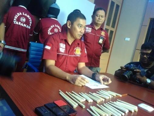 WCS IP Perkuat Kapasitas Jaksa Lampung Tegakkan Hukum Kejahatan terhadap Satwa