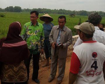 Dinas Pertanian Lamtim Mengaku Kesulitan Atasi Serangan Hama Wereng