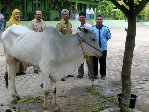 PON XIX Jawa Barat: 4 Pejudo Lampung Kandas Hari Ini