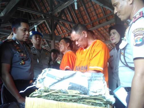 Sebanyak 99 Kilogram Ganja asal Aceh Hasil Tangkapan Polresta Bandar Lampung Dikirim Lewat Kantor Pos