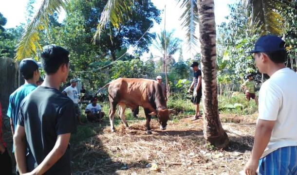 Kesaksian Bambang Irawan Bawa Noval Saputra Korban Tabrak Lari di Keteguhan