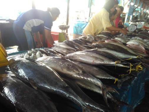 Pedagang ikan di Pasar Gudang Lelang, Telukbetung Selatan, Bandar Lampung, Sabtu, 1/10/2016 | Andi/jejamo.com