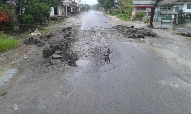 Warga Timbun Seadanya Ruas Jalan Jatimulyo-Sukadamai Lampung Selatan