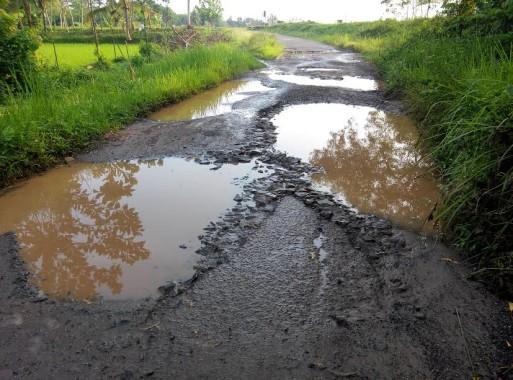 Mengenaskan, Beginilah Kondisi Jalan Kabupaten di Desa Raman Aji Lampung Timur
