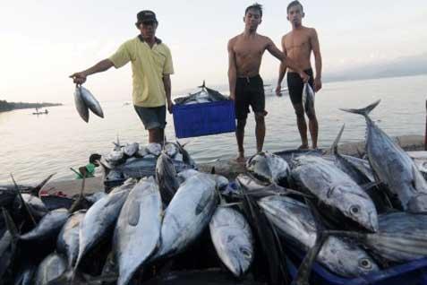 Nelayan Asing Diusir, Indonesia Sukses Ekspor Ikan Layang