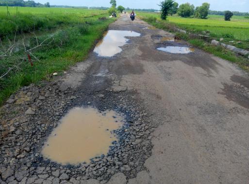 Warga Desa Taman Fajar Purbolinggo Keluhkan Kondisi Jalan Desa yang Rusak Parah