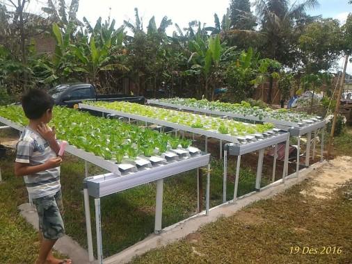 Kampung Wisata Agro. | Andi Apriyadi/jejamo.com