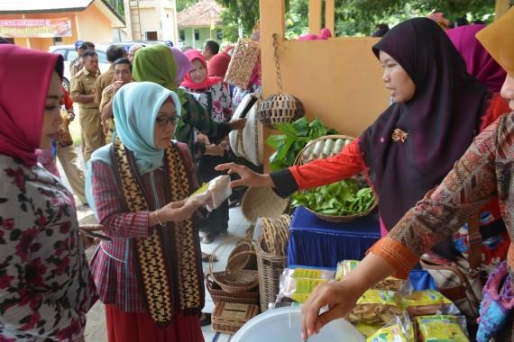 Kepala Perwakilan BKKBN Provinsi Lampung Paulina tinjau stan pada Lomba Kesrak PKK di Tuba Barat. | Ist
