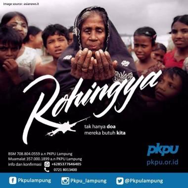 Buka Penggalangan Sampai Desember, PKPU Lampung Kumpulkan Rp10 Jutaan untuk Rohingya