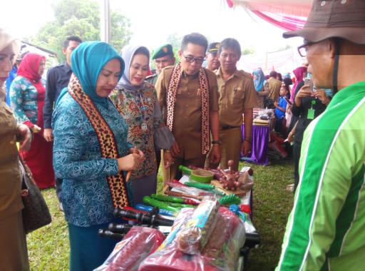 Desa Gantimulyo Wakili Lampung Timur Lomba Kesrak KB Tingkat Provinsi
