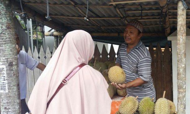 Inilah penyebab Durian Matang Musim Hujan Rasanya Tak Selezat Musim Kemarau