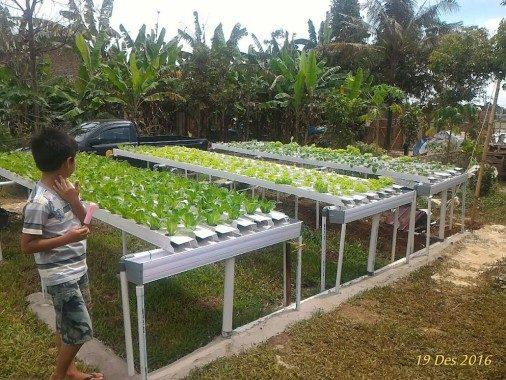 Gubernur Lampung Upayakan 57 Ribu Anak Putus Sekolah Masuk Program Indonesia Pintar