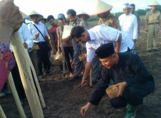 Era Mustafa, Sawah Produktif di Lampung Tengah Bertambah 1.324 Hektare
