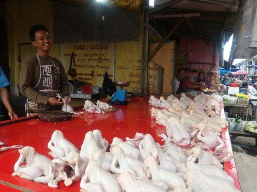Harga Daging Ayam di Bandar Lampung Masih Tinggi