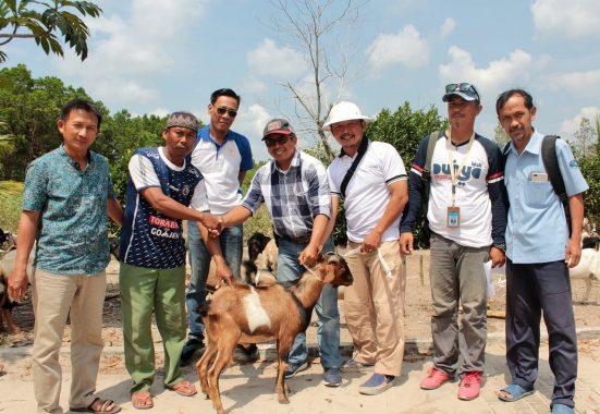 PT CPB Bagikan 38 Kambing Kurban Bagi Warga Desa Penyanggah