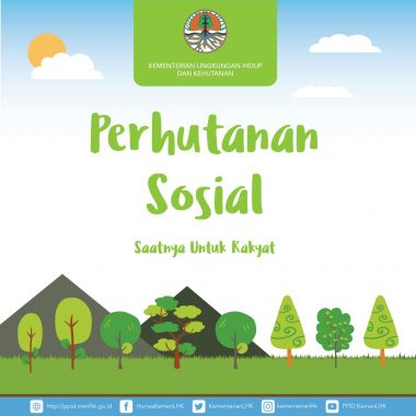 Target Perhutanan Sosial di Lampung Capai 49 Ribu Hektare