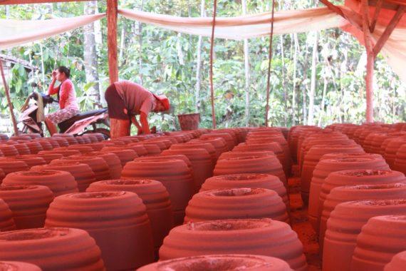Bikin Tungku, Ekonomi Warga Brajaluhur Lampung Timur Membaik