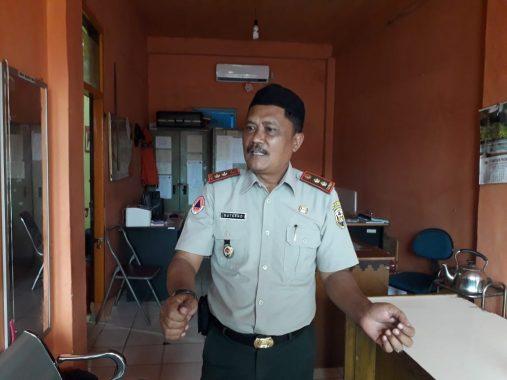 Pohon Tumbang dan Kebakaran Marak Terjadi di Bandar Lampung Selama 2018, Ini Penjelasan BPBD