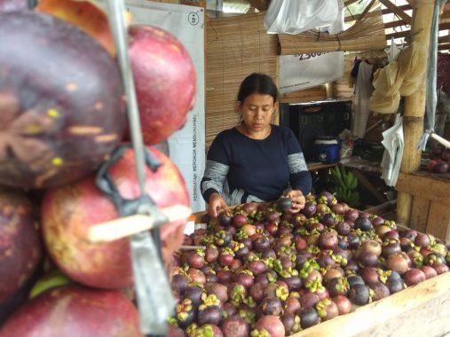 Manggis dengan Antioksidan Tinggi Kini Mudah Didapat di Sentra Buah Sukadanaham Bandar Lampung