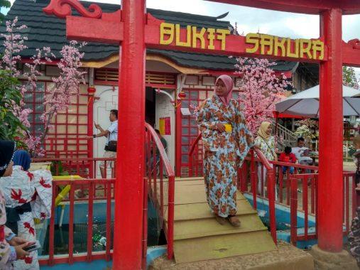 Musim Liburan Sekolah, Natal, dan Tahun Baru, Pengunjung Bukit Sakura Tembus 8.500-an Orang