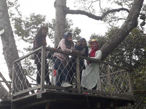 Camp 91 Kedaung Bandar Lampung Sediakan Rumah Pohon Nikmati Keindahan Alam Sekitar