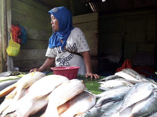 Harga Ikan Laut di Gudang Lelang Telukbetung Naik