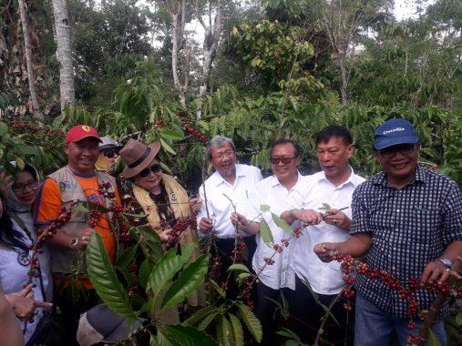 Ketua Dewan Kopi Indonesia Anton Apriyantono Minta Kopi Lampung Barat Dijaga Kualitasnya