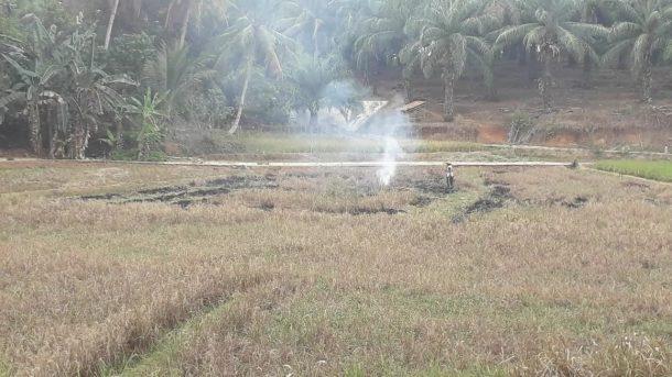 Konvoi Air Bersih ACT Lampung: Kemarau Panjang, Warga Desa Banjar Sari Gagal Panen