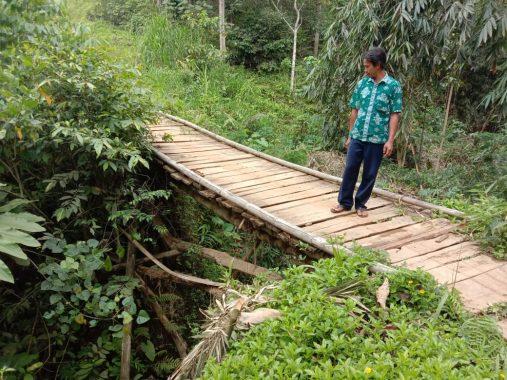 Jembatan Darurat Perbatasan dua Pekon di Kotaagung Timur Butuh Perhatian Pemkab Tanggamus