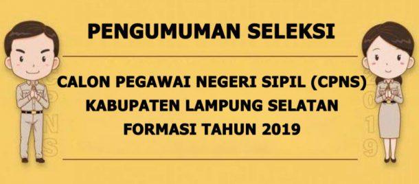 CPNS 2019, Pemkab Lampung Selatan Buka 367 Formasi