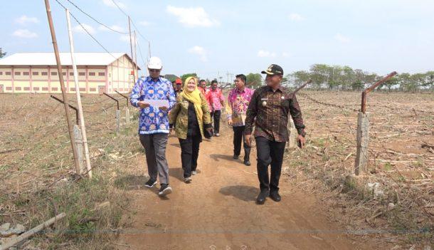 Pekan Depan Kawasan Agrowisata Kalianda Mulai Dikerjakan