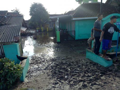 Banjir Rendam Pesawaran, Hewan Ternak Hanyut Terbawa Arus