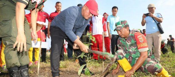 Kodim 0421 Lampung Selatan Tanam 4.000 Pohon di Ketapang