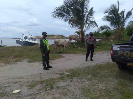 Polsek Wonosobo Tanggamus dan TNI Patroli di Pantai Saumil