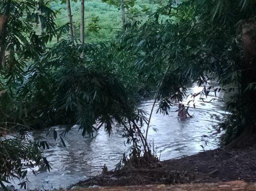 Balita Hanyut, Warga dan Tim SAR Sisir Sungai Desa Fajar Baru Jatiagung Lampung Selatan