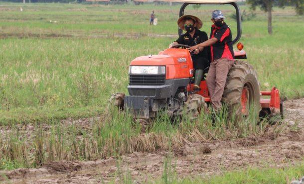 Menteri Pertanian dan Gubernur Lampung Kunjungi Lahan di Trimurjo