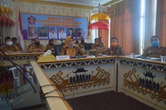 Bupati Dewi Handajani Ikuti Rapat Koordinasi Kawasan Industri Tanggamus