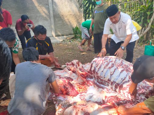 Wakil Wali Kota Metro Djohan Kurban Sapi Limousin, Bagikan Dagingnya untuk Warga Yosodadi