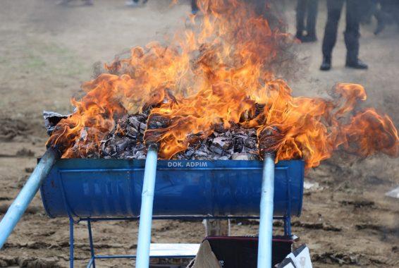 Gubernur Arinal Djunaidi Pimpin Pemusnahan Tembakau