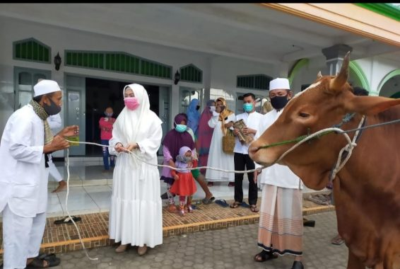 Idul Adha 1441 Hijriah, PKS Kota Metro Potong 4 Sapi dan 4 Kambing