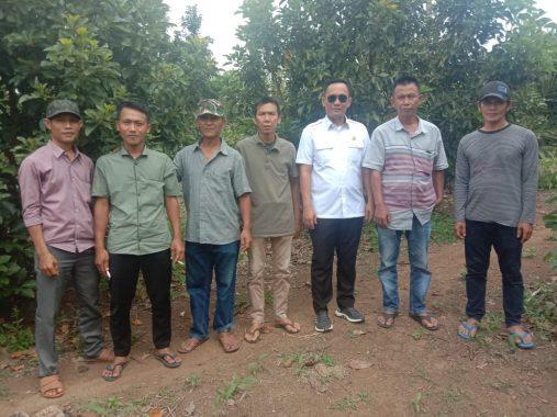 Anggota DPRD Tanggamus Sosialisasi Perda Perlindungan Produk Lokal